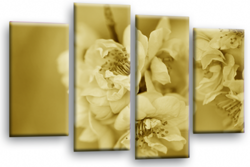 Floral Flower Wall Art Picture Sepia Grey Spring Blossom Print Split